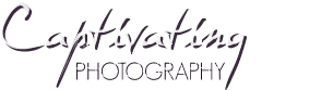 Captivating Photography Blog